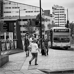 New kid in town (John Riper) Tags: johnriper street photography straatfotografie square vierkant bw black white zwartwit mono monochrome netherlands candid john ripercanon 6d 24105 l people centraal station bus autobus busstop man bot hat ret meijersplein signs metro airport travellers tourists albeda college
