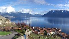 Rivaz, a beautiful place to be (Karl Le Gros) Tags: rivaz lavaux xaviervonerlach 2017 switzerland cantondevaud lebeaupaysdevaud vevey sonyilce7rm2 sonyzeissfe55mmf18za