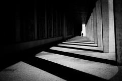 Light stair (tomabenz) Tags: shadowplay noiretblanc urban light shadow monochrome lisboa lisbonne bnw stripes bw streetview black white lisbon sony a7rm2 street photography blackandwhite lightandshadow sonya7rm2 streetphotography