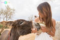 Sesiones solidarias (Almu_Martinez_Jiménez) Tags: solidaria animal love burro donkey shooting ayudar refugio shelter santuario burritos pareja couple equino equido comunion