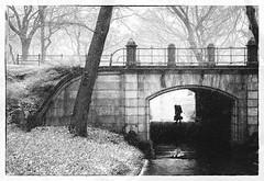 Gimme Shelter (8230This&That) Tags: centralpark manhattan nyc newyorkcity snow winter street streetpeople streetscene heavyload blackandwhite bw newyork unitedstates us shelter