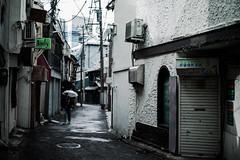 yokosuka alley (N.sino) Tags: m9 summiluxm50mm yokosuka alley rain bar snack スナック 裏通り バー 横須賀 傘 judy