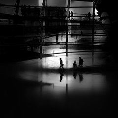 ...levels... (*ines_maria) Tags: berlin germany reichstag light reflection people silhouette urban urbanart city interpretation monochrome mono blackandwhite blancetnoire street streetphotography blur dmcgx8 panasonic panasonicdmcgx8