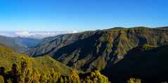 Green valley (Rico the noob) Tags: dof landscape nature outlook outdoor madeira clouds trees 1120mm tree published sky panorama 2017 valley d500 1120mmf28
