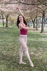 Portland Cherry Blossoms at Tom McCall Waterfront Park (Neu Perspectives Photography) Tags: pdx portland pdxcherryblossoms cherryblossoms pdxmodel portlandmodel pdxphotographer portlandphotographer tommccallwaterfrontpark brunnette ballet ballerina leotard pantyhose tights spring springtime