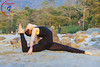 """Yoga Postures <a style=""""margin-left:10px; font-size:0.8em;"""" href=""""http://www.flickr.com/photos/63427881@N08/33810165730/"""" target=""""_blank"""">@flickr</a>"""