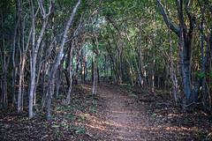 Mazunte Punta Cometa lookout walk