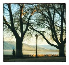 * (PattyK.) Tags: ioannina giannena giannina epirus ipiros hellas ellada greece grecia griechenland balkans europe europeanunion mycity whereilive lovelycity lakeside lakefront lake pamvotida lakepamvotida ioanninalake afternoon trees sunshine february 2017 amateurphotographer ilovephotography ιωάννινα γιάννενα ήπειροσ βαλκάνια ελλάδα ευρώπη ηπόλημου όμορφηπόλη παραλίμνιο μώλοσ δίπλαστηλίμνη παμβώτιδα λίμνηπαμβώτιδα λίμνηιωαννίνων φεβρουάριοσ winter χειμώνασ