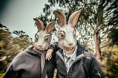 Happy Easter (Thomas Hawk) Tags: california sanfrancisco usa unitedstates unitedstatesofamerica mask rabbit fav10 fav25 fav50