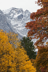 Fall Foliage at Eibsee (DJNstudios) Tags: eibsee germany austria zugspitze duck foliage snow peak mountain reflection lake see dock leaves colors