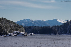 Along the Ferry (matttimmons1) Tags: ferry ketchikan alaska craig hollis mountains trees water snow winter frontier atmosphere