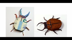 Money bug tutorial online! (Gregorigami) Tags: moneyorigami origami eurogami moneyfolding gift present
