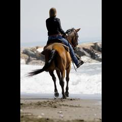 Pasqua alternativa! (NAIGO) Tags: cavallo raagzza mare spiaggia onde schiuma zoccoli vada trotto canon 7d naigo