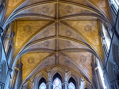 Choir Vault, Worcester Cathedral (Aidan McRae Thomson) Tags: worcester cathedral worcestershire architecture medieval gothic ceiling vault vaulting