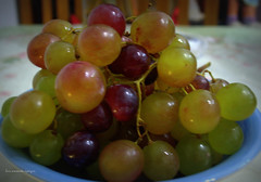 Colectivo dulce. (luisarmandooyarzun) Tags: photographers fotógrafos photography fotografia argentina fotomanual nokon uvas frutas