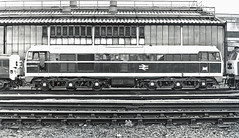 ADB 968013 newly converted. Outside Stratford Depot May 1979 (mikul44171) Tags: class310 toffeeapple stratford 30a depot locoshed aia exworks exdrs heatingunit conversion
