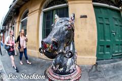 20170423_12541001-Edit.jpg (Les_Stockton) Tags: frenchquarter horsepost neworleans vacation louisiana unitedstates us