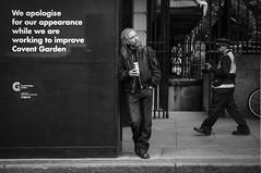 We apologize (jonron239) Tags: england unitedkingdom london geezerwednesday man drinking beer hoarding trafficwarden richmond longhair blonde construction leaning stride