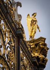 Warrington golden gates 03 apr 17 (Shaun the grime lover) Tags: warrington detail gateway sculpture golden gates cast iron cheshire angel ornate decoration town hall