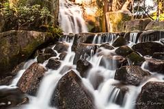 #nikon #nikonitalia #naturephotography #nature #paesaggio #garden #cascata #ph #phography #photography #photographer #photo #japan #wonderful #world #world_great #sunrise_sunsets_aroundworld #sunset #top_world_photo #volgoworld #vivoworld #instalike #inst (penn.sara) Tags: nikon nikonitalia vivoworld naturephotography instalike cascata ph volgoworld phography life worldgreat garden paesaggio nature instagram wild naturelovers sunset wonderful topworldphoto world photography wildlife photo instagood japan adventure photographer sunrisesunsetsaroundworld nationalgeographic