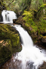 Turndrum falls Killarney  | Shane Turner Photography Tralee Co. Kerry (Shane M Turner) Tags: wood ireland summer motion green water rock forest photography waterfall shane kerry falls killarney co turner tomies turndrum