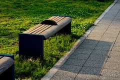 Bench and Shadow (megrumeg) Tags: shadow bench nikon 85mm d600 f18g