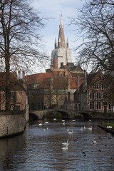 Bruges (kiarras) Tags: bridge church water puente canal agua belgium iglesia swans bruges belgica brujas cisnes