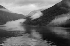 K7-200310-181 (Steve Chasey Photography) Tags: newzealand southisland doubtfulsound march10 k7 fiordlandnp smcpentaxda1650mm pentaxk7