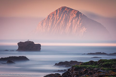 THE R O C K   V (Silent G Photography) Tags: california ca longexposure rock cali sunrise nikon highway1 telephoto adobe le nik morrobay centralcoast morro morrorock reallyrightstuff rrs 2013 nikond800 markgvazdinskas silentgphotography silentgphoto