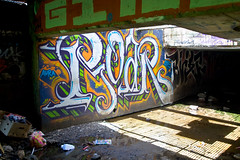 Roar (TheHarshTruthOfTheCameraEye) Tags: graffiti oakland cant be roar emt cbs stopped cantbestopped