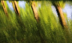 brushstrokes (GCB/PHOTOGRAPHY) Tags: reflections river scotland stream burn impressionism forres morayshire ceriimages