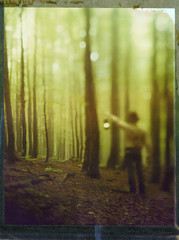 Misty Labyrinth (Bastiank80) Tags: camera trees light color film nature field misty analog polaroid woods foggy large human instant 4x5 sheet format expired labyrinth leading latern 79 wista bastiank