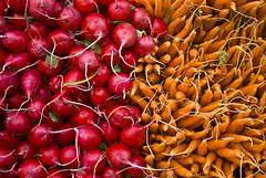 Wall of Color (lm_jns32) Tags: newyorkcity texture vegetables market carrot greenmarket produce unionsquare radish farmmarket