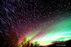 Aurora Star Stacks (6) (tmv_media) Tags: longexposure pink red green yellow night stars star norge long exposure sony north norwegian tokina aurora lapland scandinavia stacked borealis scandanavia northernnorway 1116mm northofthearcticcircle tmvmedia tomvooghtphotography tomvooght tmvmediacom starstax slta77v
