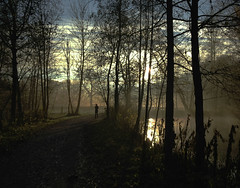 """Should I turn around?"" (HannaSandqvist) Tags: morning november light sun mist turn denmark fear around possible odense n"