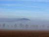 Hazy memories (RainerSchuetz) Tags: trees mist fog day cloudy bestofblinkwinners