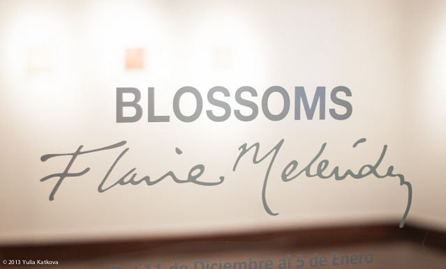 """Blossoms"" by Flavia Melendez"