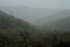 ... rainy .... (Simos1968) Tags: cold leaves rain countryside