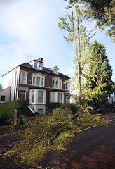 RH2 Road Blocked (pg tips2) Tags: road storm tree october wind surrey fallen warren 28 reigate 2013 rh2