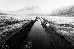 Frost, Ice and Snow at Shinano, Nagano (sachman75) Tags: morning trees winter mountain ice water lines japan fog rural sunrise landscape canal frost grove farm fields nagano canon1740mmf4 shinano mtkurohime 5dmark2 canon5dmarkii