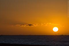 Zonsondergang | 21-2-'14 (Rick Steegstra) Tags: sunset zonsondergang markermeer oostvaardersdijk