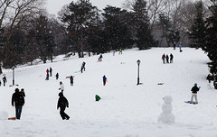 Saturday in the Park (Renatta_R) Tags: nyc newyorkcity snow nature weather snowman play centralpark families places sledding pp19