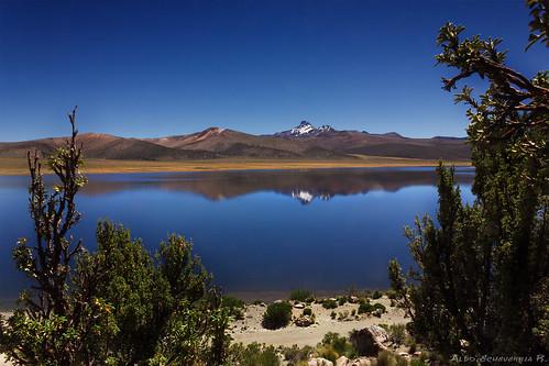 Huaynacota Lake, Sajama National Park