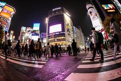 Shibuya crossing HDR / Tokyo by night - Japan (red-illusion) Tags: shibuya crossing hdr tokyo by night japan