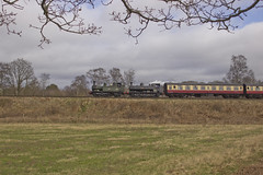 14xx no.1450 and Pannier no.7714 (alts1985) Tags: 14xx no1450 pannier no7714 riffle range nature reserve halt safari park curve bewdley severn valley railway spring steam gala svr train worcestershire shropshire 170317 180317