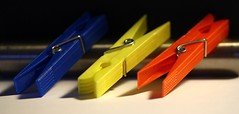 #Primary Colors (murraymike89410) Tags: sequim washington 100mmlmacro flickrfriday primarycolors