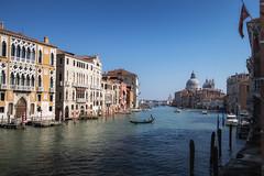 Lone Boatman (the CAMera of ian CAMpbell; simple) Tags: venice venetian gondola grandcanal santa maria canal water boat