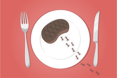 Trail of ants on a plate - picnic
