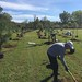 Highland_Renaissance_Tree_Planting_Event_2017 (45)