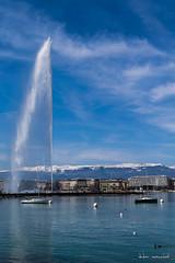 Genève (Didier Mouchet) Tags: genève jetdeau lacléman paysages suissegenf helvétie helvétique eau didiermouchet d5300 nikond5300 paysage landscape lac littoral